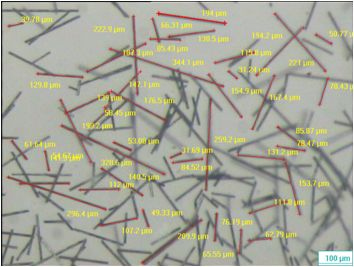 microscopia_autofm_fibra_carbono